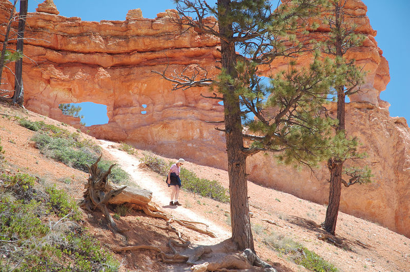 "Rock formations along the <a href=""http://www.nps.gov/brca/tour_mossy.html"" target=""_blank"">Mossy Cave Trail</a>."