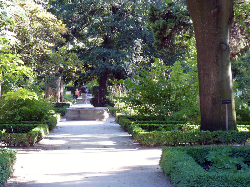 Madrid's Royal Botanical Gardens. Founded in 1755 by King Ferdinand VI.