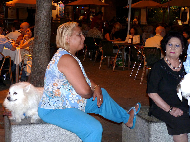 Ladies & their dogs people watching in Plaza Santa Ana.