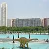 Plaza with dinosaur at Valencia's City of Arts & Sciences.