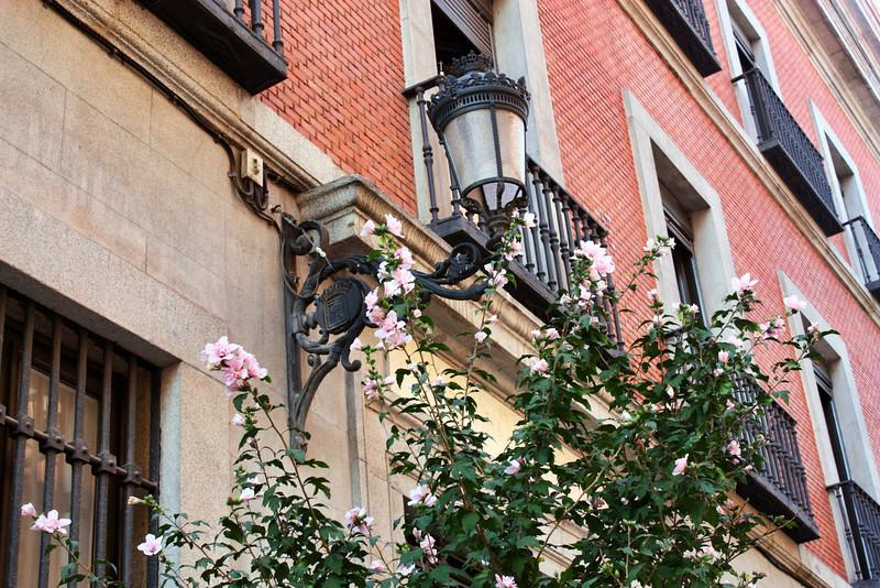 Street lamps & flowers.