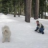 2019-03-21-0014-Trip to Tahoe with Dogs-Lake Tahoe-Curtis-Teddy the Dog-Leo the Dog