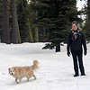2019-03-21-0019-Trip to Tahoe with Dogs-Lake Tahoe-Debby-Leo the Dog