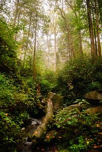 2013 Smokey Mountain National Park