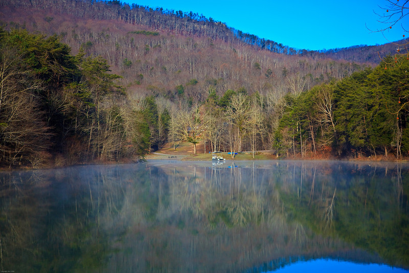 Morning Light at the Pond