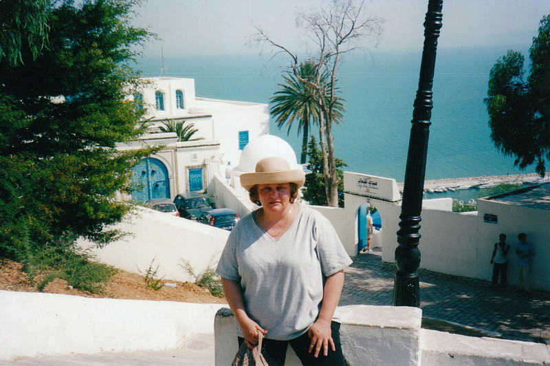 The beautiful, picturesque town of Sidi Bou Said on the cliffs overlooking the Gulf of Tunis.