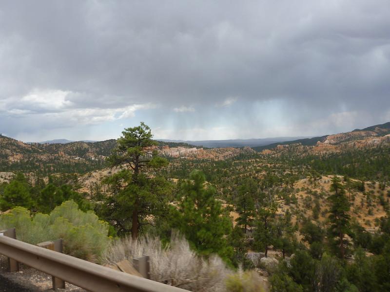 Aw, Rain!