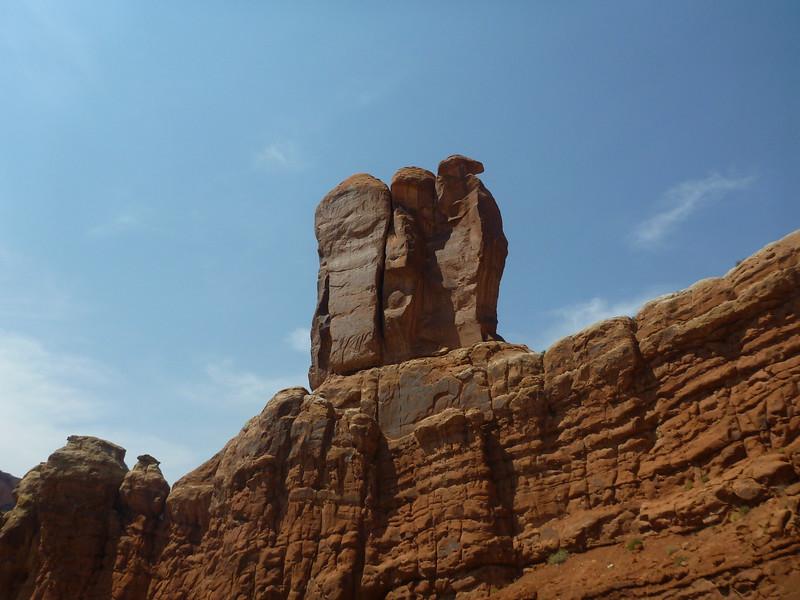 A camel with an eagle's head.