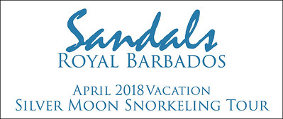 Silver Moon Snorkeling Tour in April 2018