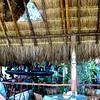 Dluxes Restaurant
