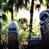 Adventureland: Magic Kingdom