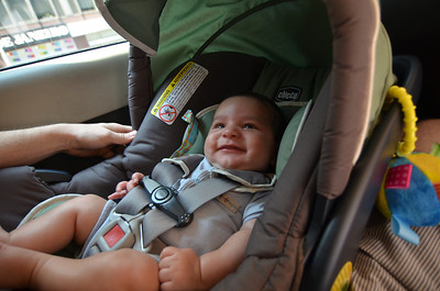 Zavier enjoys his first cab ride (for about 10 seconds)