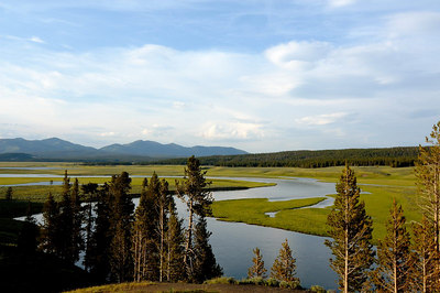 The Yellowstone River in Hayden Valley