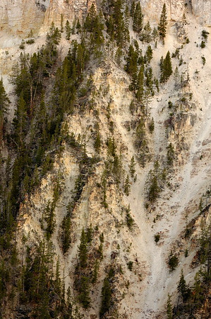 Wall of the Grand Canyon of the Yellowstone at dawn