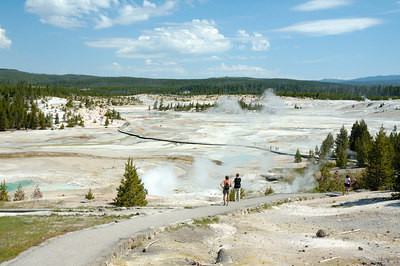 Porcelin Basin at Norris Geyser Basin - the hottest part of Yellowstone
