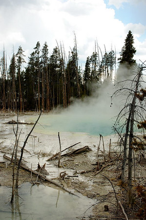 Cistern Spring - when Cistern empties, Steamboat erupts