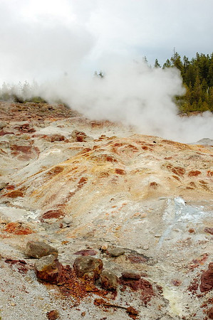 Steamboat Geyser - the world's tallest