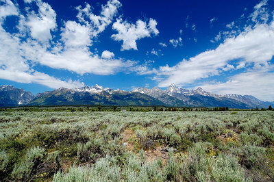 Sage flats and the Tetons from Dornan's