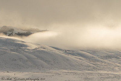 Light and Shadows Lamar Valley, Yellowstone NP-3