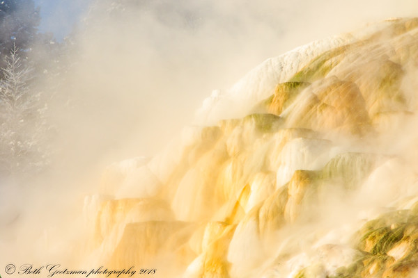 Maammoth Hot Springs - Yellowstone NP-4