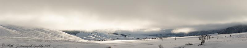 Lamar Valley, Yellowstone NP - pano