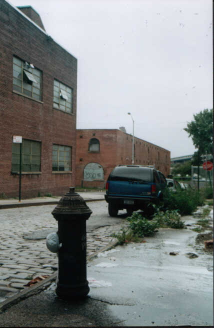 Brooklyn landscape