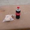 Pork tenderloin sandwich and a coke for a quick lunch