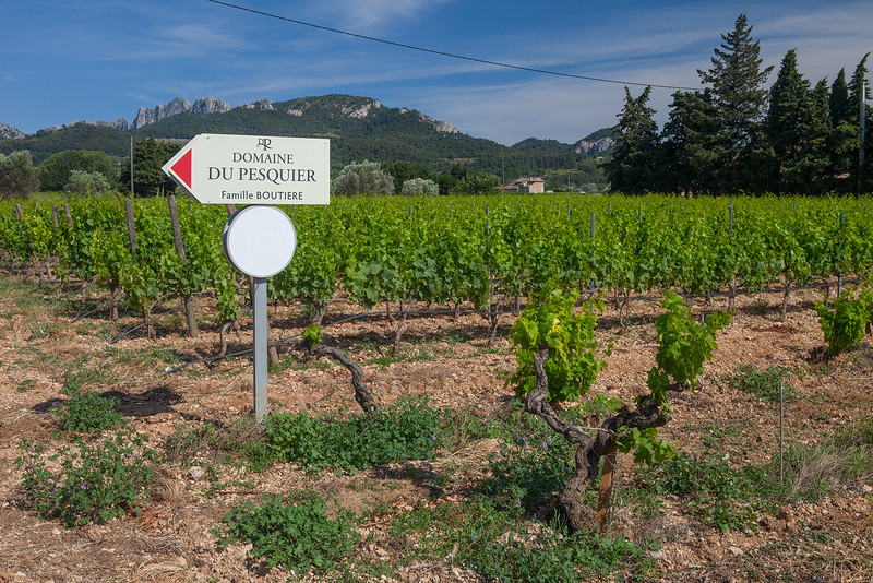 Domaine du Pesquier-Our Favorite Gigondas Winery 3027