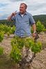 Mourchon Vineyards-Hugo