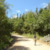 Wandeling de heuvel op achter Perce