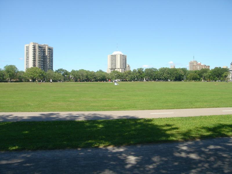 Stukje van het grote park