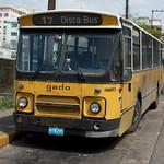 Veel oude Nederlandse bussen