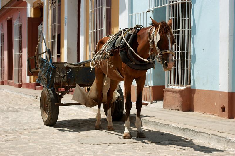 Vervoer in Trinidad