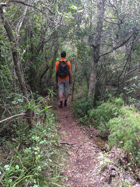 Wildernis - Wandeling in de bergen