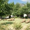 Ons guesthouse in Knorhoek