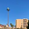 GSM antenne vermomd als palmboom