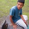 Onze olifantenbestuurder