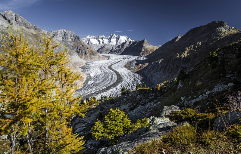 Aletsch Glacier Autumn
