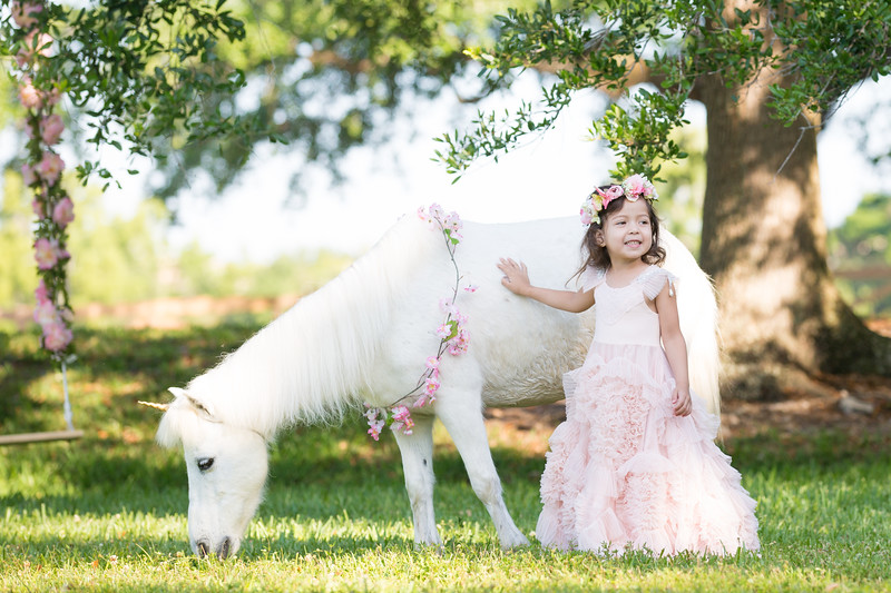 Valentina & Her Unicorn-19