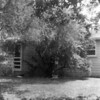 Rear of house, 606 Malinche, Laredo, 1961
