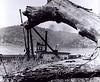Ohio River Tug