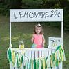 Lemonade1_391