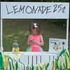 Lemonade1_372