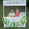 Lemonade1_463