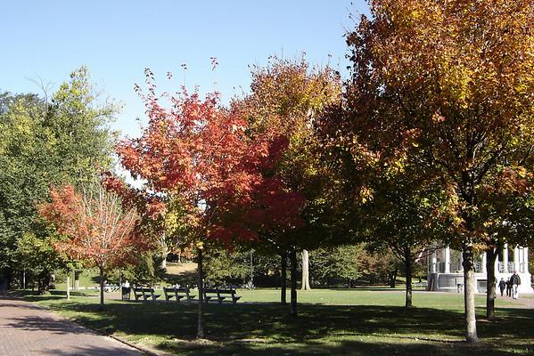 DAY 1 - Autumn in Boston