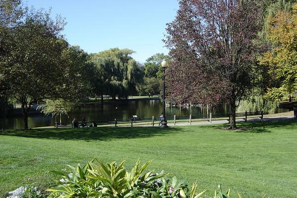 Lake in the Public Garden