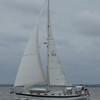 Tenacity under sail
