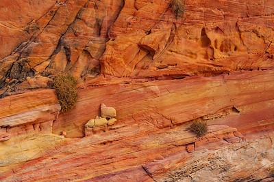Stained Sandstone in Valley of Fire State Park