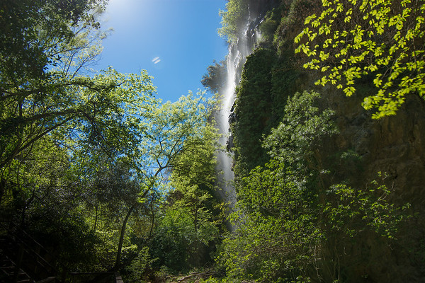 Vallon des Carmes, pépite de la Provence Verte (2)