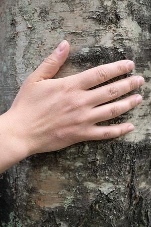 Touching A Tree